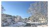 Wonderland (Chapter 3) (Timothy Valentine) Tags: 2018 blizzard intheneighborhood sky 0318 snow eastbridgewater massachusetts unitedstates us