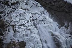 Pissevache (bulbocode909) Tags: valais suisse vernayaz pissevache cascades hiver gel glace arbres branches nature montagnes forêts eau