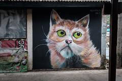 Rim Klong Latphrao (Goran Bangkok) Tags: bangkok thailand latphrao local community housing graffiti disappearing