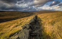 Stone fence HD wallpaper (kibik111) Tags: nature imgprixcom