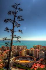 Bullring in Malaga (Tryppyhead) Tags: spain 2018 andalucia malaga hdr nikond7200 photomatixpro paintshoppro bullring
