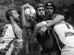 Ft. Lauderdale Knights- Naples Hammerheads (27-12) (life-is-color) Tags: rugby florida ftlauderdale fortlauderdale knights naples hammerheads