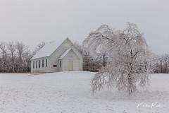 L59A3096.jpg (kendra kpk) Tags: 2018 december landscape winter church us frost 2015 southdakota trippcountyhistoricalsite trippcounty daktawindsphotocom dakotawindsphotocom white beaulieaudam trees black snow dakotawindsphotography winner cold ice