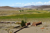 Fertile oasis of Paycuqui settlement (Gregor  Samsa) Tags: argentina argentinian trip roadtrip journey exploration adventure outdoors scenery scenic altiplano barren eerie landscape highaltitude settlement