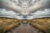 Symmetry - Two Bridges Dartmoor (pm69photography.uk) Tags: southwest symmetrical symmetry sony spooky sonya7rii voigtlander voigtlanderheliarf56 voigtlanderheliar10mmf56 10mm devon dartmoor twobridgeshotel trees tree moody moor moors clouds hdr