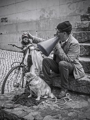 big band (slavamanc) Tags: dogs street streetmusician band funny lisbon alfama stairs man portrait candid performing monochrome black white lumixgvario1232f3556 panasonicdmcgx80
