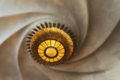 """""""Si descubrimos una teoría completa, con el tiempo habrá de ser, en sus líneas maestras, comprensible para todos y no únicamente para unos pocos científicos."""" (carmenvillar100) Tags: stephenhawking lampara casabatlló barcelona artdecó modernismo espiral carmen villar gaudi"""