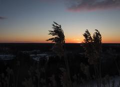 A Hay on the Hill (makkus1996) Tags: sun sunset sky cloud orange blue horizon spring cold snow canon photography