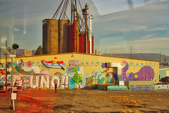 Grafiti on Warehouse (btusdin) Tags: 7daysofshooting week35 streetartgraffiti colourfulthursday