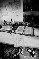 Work in progress (Nat Pallotovitch (Adonicia)) Tags: noir blanc art flamingo livre