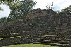 The Last Temple (elhawk) Tags: temple yaxchilan maya chiapas ruins