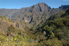 Le Grand Bénare (2 898 m.) (philippeguillot21) Tags: cirque cilaos bénare réunion france outremer indianocean africa pixelistes nikon