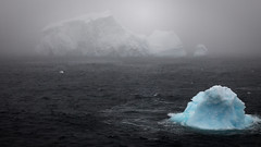 """Shapes in the fog"" - Marguerite Bay, West Antarctic Peninsula (alejandro.romangonzalez) Tags: antarctica southernocean rrsjamesclarkross bas britishantarcticsurvey antarcticpeninsula seascape ice iceberg fog outdoors nature"