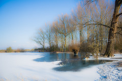 Empel 3756 (Ingeborg Ruyken) Tags: dropbox zonsopkomst februari sunrise winter water frost february floodplain flickr snow sneeuw morning ijs riverforeland empel koud 500pxs frozen cold bevroren natuurfotografie ochtend vorst maasuiterwaarden ice