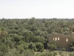 Siria_Jordania 129 (alida_j) Tags: siria jordania viajes orientemedio