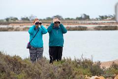 salinas-de-san-pedro-murcia-26 (psemitiel) Tags: flora fauna aves flamencos flamenco vuelo volar laguna salina san pedro pinatar murcia turismo ecologia parque ecologico naturaleza