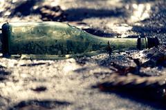 Eine grüne, leere Flasche auf Bokeh-Eis (Pascal Volk) Tags: berlin tiergarten berlinmitte invierno winter frozen iced gefroren gélida bokeh dof depthoffield canoneos6d canonef70300mmf456lisusm 300mm botella flasche bottle verde grün green oro gold azul blau blue dxophotolab 7dwf freetheme