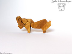 Spike le bouledogue - Barth Dunkan. (Magic Fingaz) Tags: anjing barthdunkan chien chó dog hond hund köpek origami perro pies пас пес собака หมา 개 犬 狗