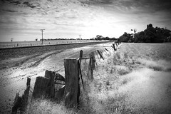 Thirsty paddocks (alideniese) Tags: bw 7dwf alideniese landscape blackandwhite rural country countryside fence grass hot dry parched farmland victoria australia greatsouthcoast kiata rickety broken sky clouds weather railway traintrack railwayline windmill