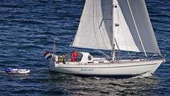A sailboat in the Stockholm archipelago (Franz Airiman) Tags: sail segel segelbåt sailboat båt boat ship fartyg stqockholm sweden scandinavia granhamnsfjärden granhamnbay