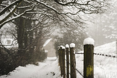 Snow Day! (stetoppingphoto) Tags: winter wonderland snow thick darwen lancashire local walk walking misty sony a7 carl zeiss lens sonnar this is lancs march 2018 barbed wire fence
