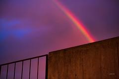 DSC_8277 (dariofal) Tags: cielo nubes nubesnegras blackclouds sky redsky nikon nikond810 nikonistas nikonians montevideo uruguay rainbow sol puestadesol arcoiris