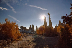 Moonrise - Full Moon at Mono Lake, California (W_von_S) Tags: monolake southtufa california kalifornien southwest südwesten usa us vereinigtestaaten america amerika landschaft landscape paysage paesaggio natur nature mondaufgang moonrise fullmoon vollmond mondstern licht light bright hell sterne stars kalktuff tufa felsen rocks sträucher sony sonyilce7rm2 wvons werner outdoor langzeitbelichtung longexposure naturesfinest