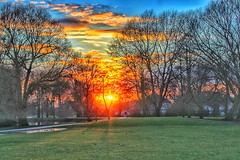 Scorching sunset! 😁🌞😁🌞 (LeanneHall3 :-)) Tags: fierysunset sunset sunshine sun field green grass red yellow orange blue sky skyscape white clouds trees branches hull kingstonuponhull eastpark landscape canon 1300d cloudsstormssunsetssunrises
