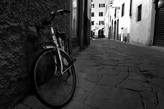 Via del Corno, Firenze (Florence), Italy. (DESPITE STRAIGHT LINES) Tags: nikon d7200 nikond7200 nikkor1024mm nikon1024mm getty gettyimages gettyimagesesp despitestraightlinesatgettyimages paulwilliams paulwilliamsatgettyimages florence firenze florenceitaly italy bike bicycle mono street florencestreet viadelcornoflorence