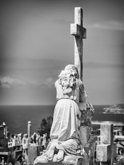 Waverley Cemetery 6 mono (Mariasme) Tags: cemetery monochrome blackwhite waspnest cross statue mpt614 matchpointchampion matchpointwinner