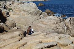 IMG_7553 (mudsharkalex) Tags: california pacificgrove pacificgroveca