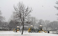 Schoolyard Snowstorm (Patricia Henschen) Tags: playground school yard naperville illinois snow snowstorm winter swings slides longwood