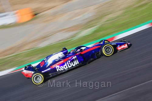 Brendon Hartley during Formula One Winter Testing 2018