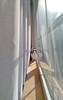 9/52 - Pretty (_SLeeJ_) Tags: cat window windowsill hiding sunshine