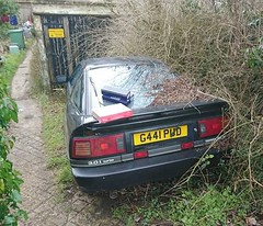 1989 TOYOTA SUPRA TURBO mkIII (shagracer) Tags: g441pud overgrown weeds undergrowth stood sorn tatty dead dying neglected forgotten shabby mk3 japanese sports car unloved