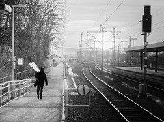 His little contribution to the foggy sunset (Leonegraph) Tags: bahnsteig platform schienen sonnenuntergang sunset outdoor drausen outside himmel sky kontrast contrast gegenlicht shadow schatten silhouette leonegraph streetphotographer streetphotography story urban spontan spontanious candid unposed human street 2018 europe germany deutschland city stadt monochrome bw blanco negro bn sw schwarz weis black white panasonicgx80 panasonic1235mmf28 mft microfourthirds hilesheim
