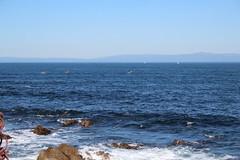 IMG_7635 (mudsharkalex) Tags: california pacificgrove pacificgroveca