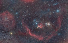 Barnard's Loop (Antoine Grelin) Tags: astronomy astrophotography barnards loop orion molecular cloud complex nevada astro stars space hubble astronomie astrophotographie boucle m78 ic434 tete de cheval horsehead nebula galaxy cluster betelguese rigel witch head canon 7d mk2 mii mark 2 ii t3i 600d astrometrydotnet:id=nova2462245 astrometrydotnet:status=solved