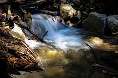 Limekiln Creek (San Francisco Gal) Tags: creek cascade limekiln water waterfall stone rock treetrunk pool longexposure le ngc npc