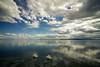 (z e d s p i c s™) Tags: balatongyörök magyarország hongarije hungary balaton landscape lakescape zedspics swan spring melt 1803 cloudy clouds calm chill