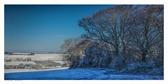 The Valley from the woods with a snow covered field, Eynsford, Kent. (Richard Murrin Art) Tags: thevalleyfromthewoodswithasnowcoveredfield eynsford kent richard murrin art photography canon 5d landscape travel images building cool