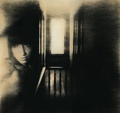 Hall Of Dreams (micalngelo) Tags: analog filmphoto alternativeprocess alternativephotography lithprint lithprocess moerschlith browniecamera acros100 fujifilm