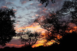 IMG_5775e ~ Sunset