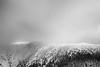 Ötscher (Rene Wieland) Tags: austria alps ötscher österreich monochrome blackandwhite winter mountains berg mostviertel schwarzundweiss lackenhof