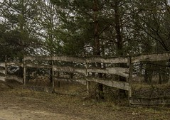 Fence (vandorlilla) Tags: fence railing paling canon trip nature hungary old untouched intact