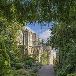 York:  Path leading to ancient ruins... thumbnail