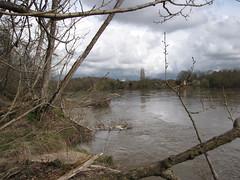 IMG_0938 (NICOB-) Tags: loire hiver nièvre bourgogne cher fleuve lumière arbres eau boisflottés embacles villechaud bannay crue cielbleu cielgris nuage