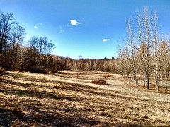 Crahen Valley Park Vista (neukomment) Tags: crahenvalleypark outdoors march 2018 android michigan usa hdr 100v10f
