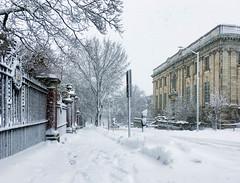 (Cjin99) Tags: providence rhodeisland unitedstates us ri winter snow brownuniversity architecture shepleyrutanandcoolidge englishrenaissance johnhaylibrary collegehill