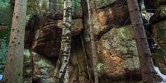 woodandrock (alskikow) Tags: mountains travel nature hike earth naturepark